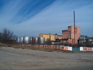 Инвестиционный  проект строительства  завода  по  производству  биотоплива