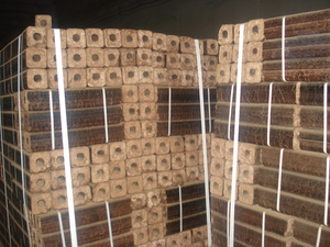 100 тонн брикетов в месяц