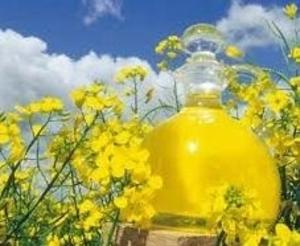 Предлагаем неочищенное рапсовое масло DIN 51605