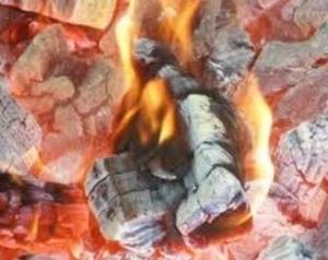 Продаем Древесный уголь по хорошей цене оптом