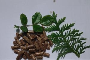 Древесные пеллеты в Луцке