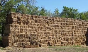 Продам солому озимой пшеницы