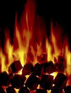 Древесный уголь и древесно угольный брикет на экспорт