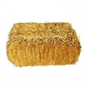 Пшеничную солому в тюках (10-13 кг) по 12 грн
