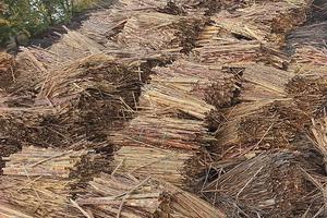 Продаем отходы лесопиления