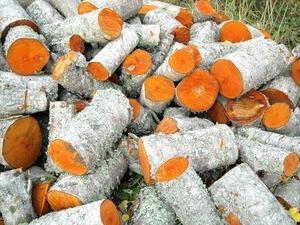 Продам колоті дрова (бук, граб, дуб)