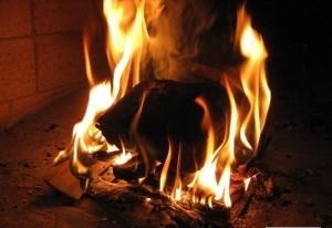 Торфяные брикеты №1 на рынке твердого топлива