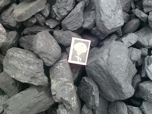 Уголь ДГ