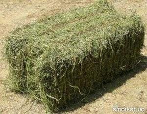 Продам сено и солому в квадратных тюках