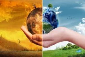 Консультации в сфере экологии