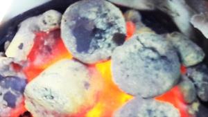 Топливные брикеты лигнин