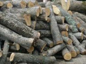 Продам древесину, дрова фруктовых пород (яблоня, груша)