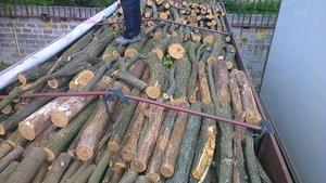 Продаю дрова Дуб, Граб
