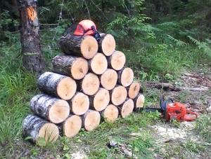 Закупим дрова колотые береза, ясень