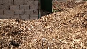 Продам щепу древесную, лиственных пород. Крупная фракция