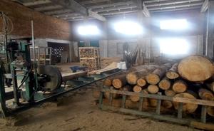 Предприятие по производству: щепы, дров, пиломатериалов