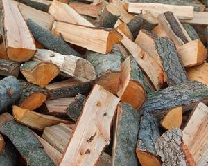 Продаем дрова из дуба, граба и бука