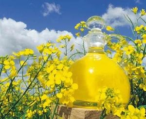 Купим сырое дегумировннное рапсовое масло DIN EN ISO