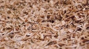 Закупаем топливную щепу 90% из хвойных пород