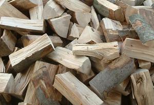 Бельгийская компания закупает дрова из сосны, ели или бука