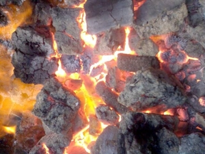 Произвожу топливный брикет из гидролизного лигнина