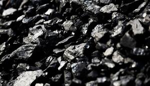 Уголь древесній из березы, EXW