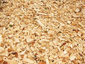 Купуємо щепу, залишки від торцювання, розпиловки деревини