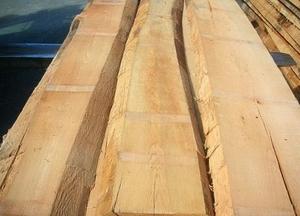 Доска необрезная сухая дубовая 50мм