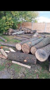 Куплю дуб, дорого (діаметр від 40)