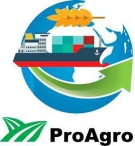 Стратегії експорту: трейдинг і логистика 2019, Киев