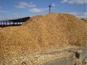 Организация закупает топливную щепу 10 000 м3