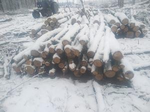 Продам дрова (техсировину) оптом
