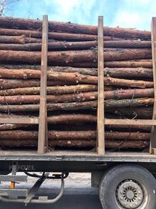 Сосновые дрова в неограниченном количестве, доставка