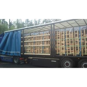 Продажа колотых сухих дров из твердых пород