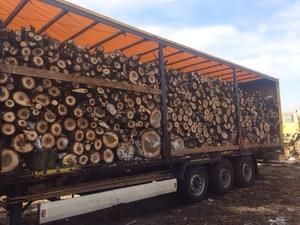 Реализуем дрова тополя опт доставка