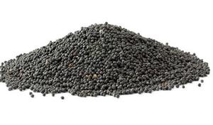 Интересуют семена рапса для экспорта