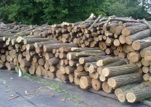 Продажа дров оптом, Полтавская область
